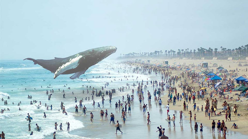 The Most Backed Augmented and Virtual Reality Startup - Magic Leap